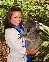 En Brisbane (Australia) con los koalas