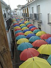 Calle Carmona Multicolor