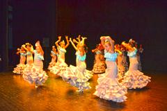 El Festival de Baile vuelve a cosechar un gran �xito en su XII edici�n