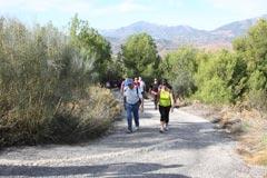 180 personas caminan en la I Marcha Senderista
