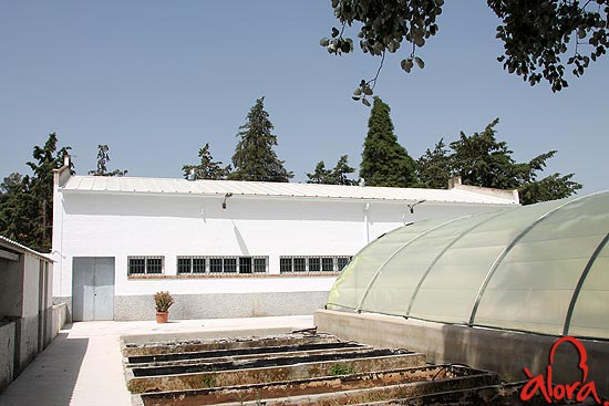 El ayuntamiento de lora rehabilita el vivero municipal - Viveros bermejo ...