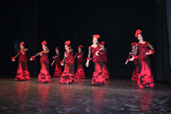La Escuela de Danza �M�nica Morales� celebra su Festival Solidario