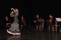 ��lora Flamenca y Solidaria!