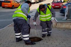 Control de plagas en el municipio de �lora