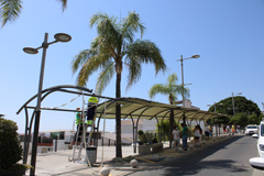 El Ayuntamiento crea una zona de sombra para la parada de taxis